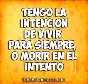 tengo_la_intencion